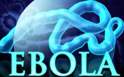 Ebolayı Kontrol Ve Takip Yazılımı Geliştirildi